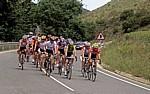 Jakobsweg (Camino Francés): Radrennfahrer - Navarra