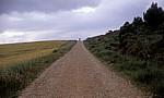 Jakobsweg (Camino Francés): Pilger auf dem Weg nach Los Arcos - Navarra