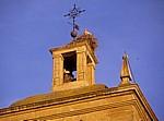 Nistende Störche (Ciconia ciconia) in der Iglesia Imperial de Santa María de Palacio - Logroño