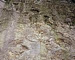 Barkhausen: Dinosaurierfährten  - Bad Essen