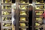 Selbstbedienungsautomat für Frikadellen & Co - Enschede