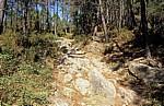 Jakobsweg (Caminho Português): Aufstieg zur Portela Grande - Labruja-Tal