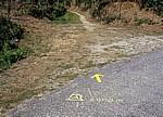 Jakobsweg (Caminho Português): Hinweis auf der Straße  - Coura-Tal