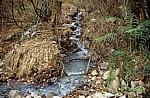 Jakobsweg (Caminho Português): Kleiner Bachlauf - Distrito de Viana do Castelo