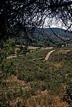 Hinterland - Distrito de Bragança