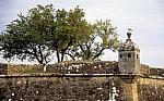 Fortaleza (Festung) Möwe auf einem der 10 Türme - Valença
