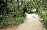 Jakobsweg (Caminho Português): Alte Steinbrücke - Ribadelouro