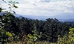 Jakobsweg (Caminho Português) - Monte Cornedo