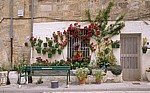Jakobsweg (Camino Francés): Blumenschmuck vor einem Wohnhaus - Rabé de las Calzadas