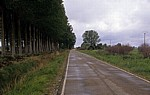 Jakobsweg (Camino Francés): Auf dem Weg in die Meseta - Castilla y León