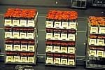 FloraHolland: Vertriebshalle – mit Rosen gef?llte Stapelwagen - Aalsmeer