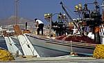 Hafen: Fischerboote - Naoussa