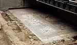 Jakobsweg (Camino Francés): La Domus del Mosaico del Oso y los Pájaros - Astorga