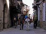 Jakobsweg (Camino Francés): Pilger mit Esel - Molinaseca
