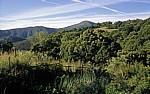 Jakobsweg (Camino Francés): Auf dem Weg nach La Faba - Castilla y León
