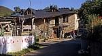 Jakobsweg (Camino Francés): Refugio vegetariano - La Faba
