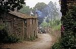 Jakobsweg (Camino Francés): Gegenverkehr (Traktor) - As Pasantes
