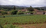 Jakobsweg (Camino Francés): Farmhaus - Pontecampaña