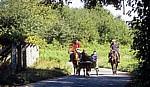 Jakobsweg (Caminho Português):  Zwischen San Mauro und Tivo – Pferdekutsche und Reiter - Galicia