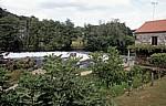 Jakobsweg (Camino a Fisterra): Blick auf den Río Tambre - Ponte Maceira