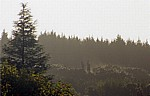 Jakobsweg (Camino Francés): Monte do Gozo - Pilgerstatuen - San Marcos