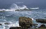 Cape of Good Hope (Kap der Guten Hoffnung) - Cape of Good Hope Nature Reserve