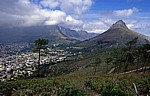 Blick vom Signal Hill auf Kapstadt - Kapstadt