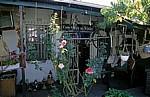 Dorpstraat: Oom Samie Se Winkel - Hinterhaus - Stellenbosch