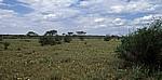 Farm Sonnleiten: Holistic Resource Management - Weidefläche - Ondekaremba