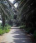 Arnold Schad Promenade: Fußweg - Swakopmund