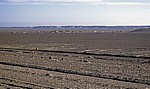 Küstenwüste - Skeleton Coast National Park