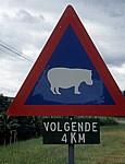 """Ver9kehrsschild """"Achtung Flußpferde"""" - Mpumalanga"""