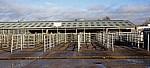 Derby Livestock Market: Leere Pferche - Derby