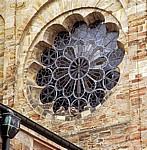 Dom St. Peter: Junge Uhus (Bubo bubo) in einem Fenster - Osnabrück