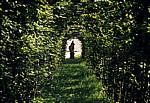 Park Linderhof: Statue am Ende eines Laubengangs - Ettal