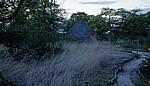 Planet Baobab: Grashütte - Gweta