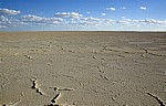 Ntwetwe Pan (Salzpfanne) - Makgadikgadi-Pfannen