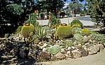 Steingarten mit Kakteen - Okahandja