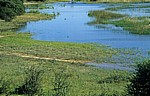 Okavango als Grenzfluß zwischen Nambia und Angola - Kavango