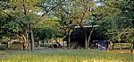Ombili: San-Dorf - Oshikoto