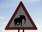 Verkehrsschild Vorsicht Elefanten - Kaokoveld