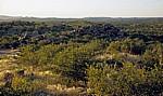 Landschaft - Kaokoveld