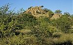 Landschaft mit Felsformation - Kaokoveld