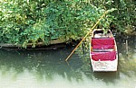 River Cam: Punt boat (Stechkahn) - Cambridge