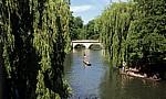 River Cam: Punting (Stechkahn fahren) - Cambridge