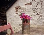 Castle Cottage: Konservendose mit Blumen - Oakham
