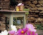 Castle Cottage: Tisch mit Blumenschmuck in alter Konservendose - Oakham