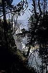 Blick durch die Bäume auf Cataract Island und Main Falls - Victoriafälle