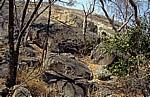 Felsformation: Zwiebelschalenverwitterung - Matopos National Park