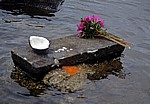 Ganga Talao: Opfergaben (Blumen und Kokosnuß) - Grand Bassin
